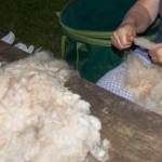 Wolle waschen_IMG_4363