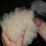 Wolle waschen_IMG_4369