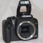 Canon500_IMG_0619